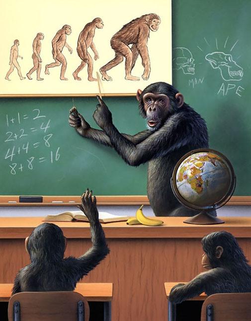 Картинка  про обезьян