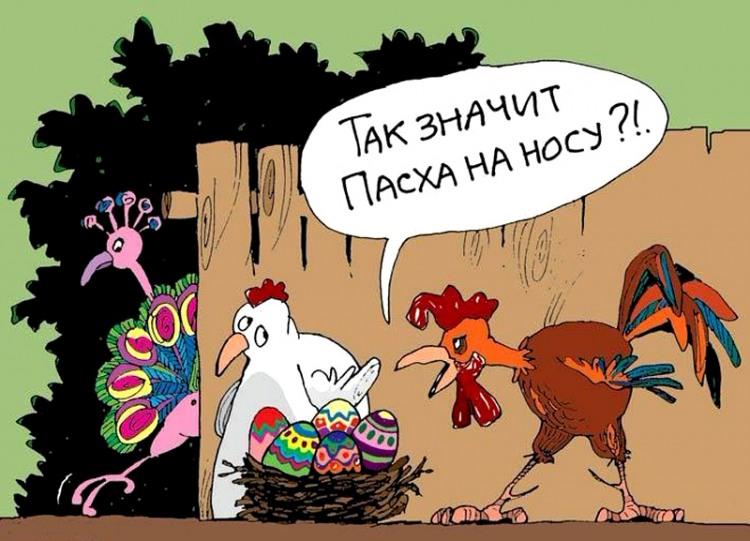 Картинка  про петуха, кур, яйца и пасху