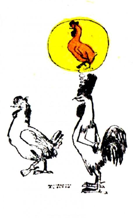 Картинка  про кур и петуха