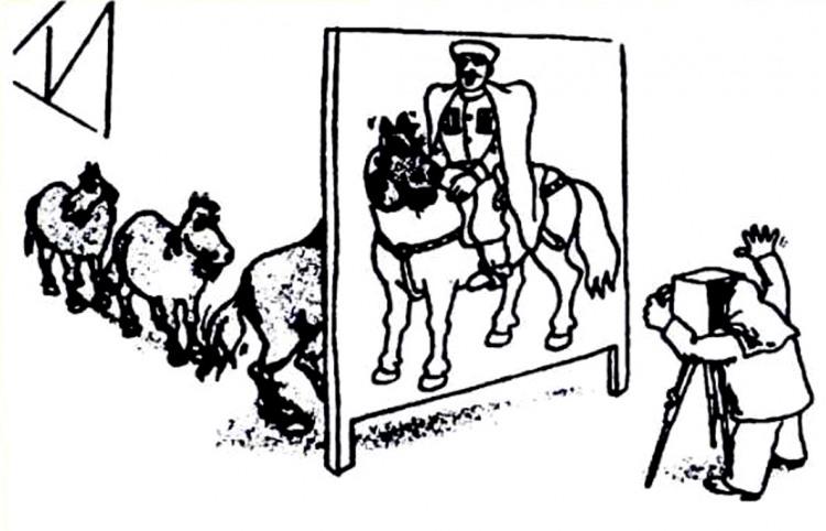 Картинка  про лошадей и фотографов