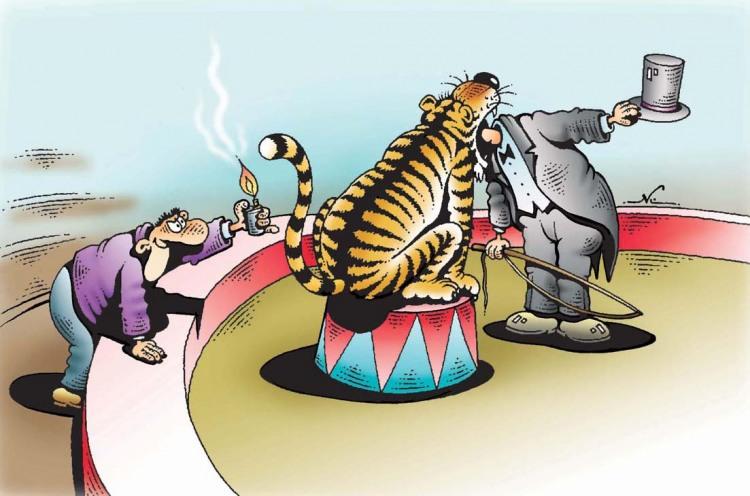 Картинка  про тигра, цирк черный