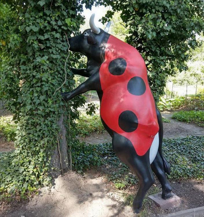 Фото прикол  про божью коровку, корову и скульптуры