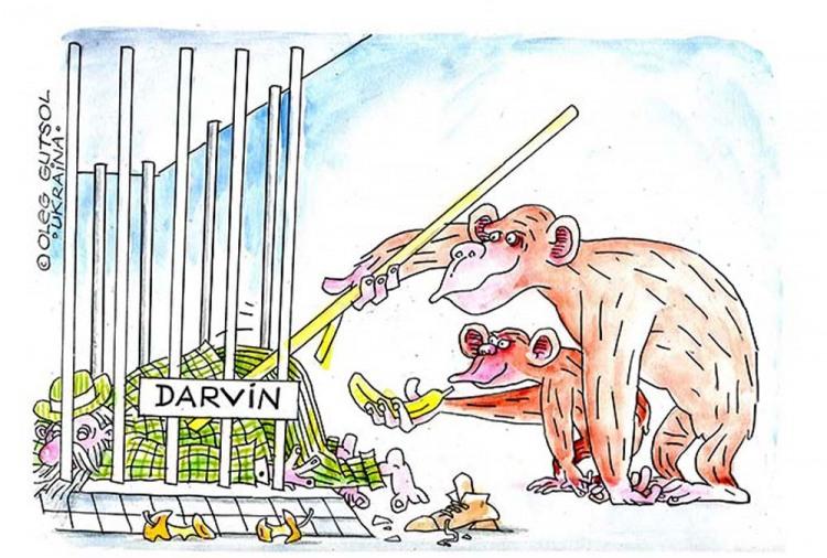 Картинка  про дарвина чарлза, обезьян и пьяных
