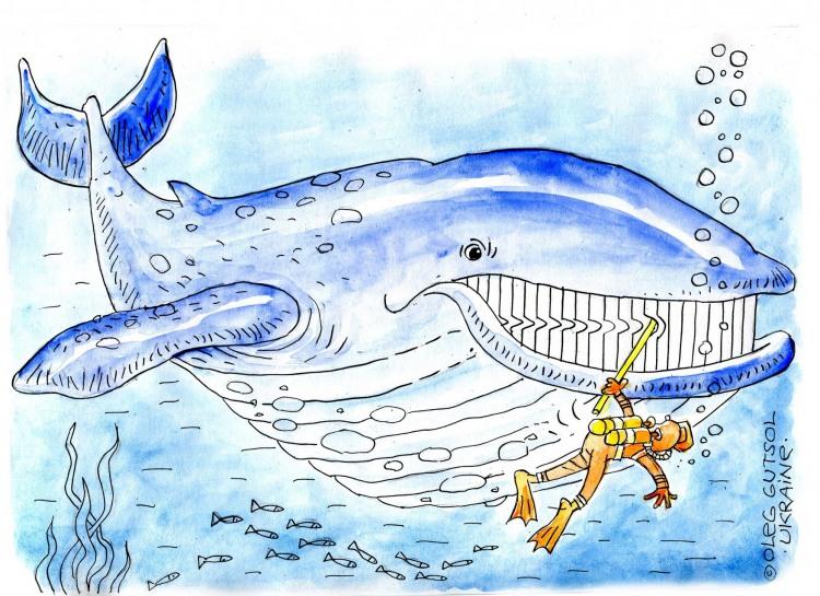 Картинка  про китов и водолазов